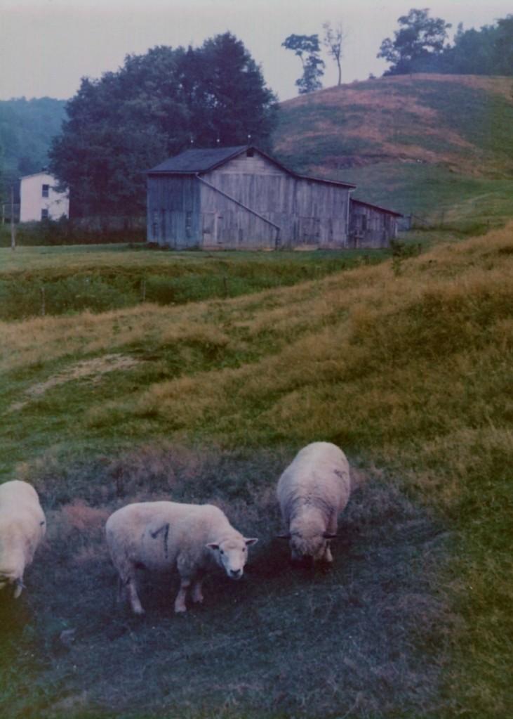 Lowel Heisey WVA_farm1973