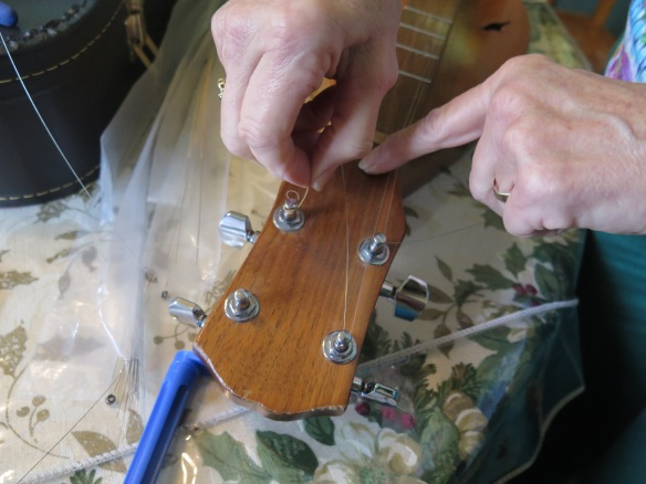 Guitar Type Scroll Head - Changing Strings - IMG_0544