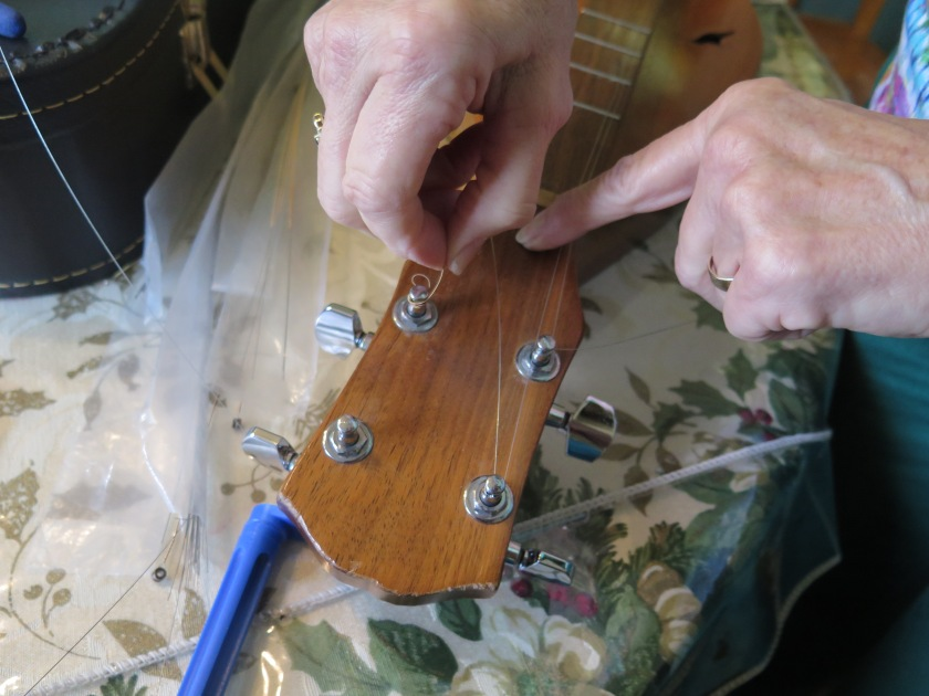 Guitar Type Scroll Head - Changing Strings - IMG_0544